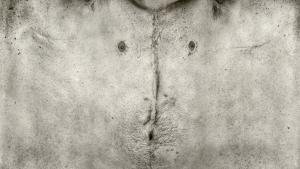 torso-series-13[1]