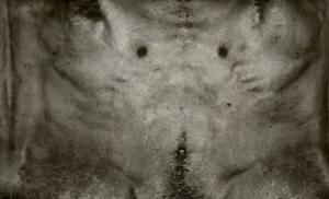 torso-series-2[1]