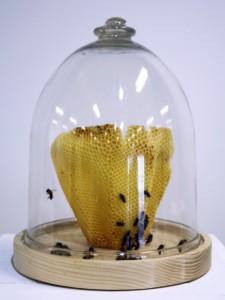 proto_bees_wax_vase_07[1]