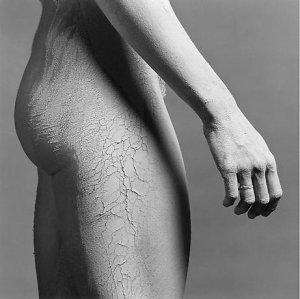 robert-mapplethorpe-lisa-lyon-1336002032_b[1]